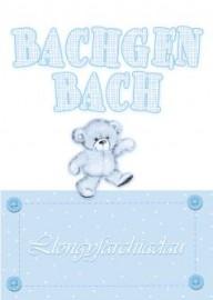 Babi - Bachgen - Tedi / Baby Boy - Teddy