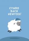 Babi - Bachgen - Dafad / Baby Boy - Sheep