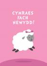 Babi - Merch - Dafad / Baby Girl - Sheep