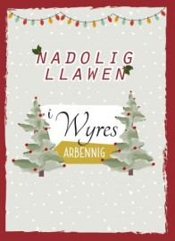 Nadolig 1 - Wyres / Xmas 1 - Grand-daughter