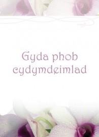 Cydym - Tegeirianau / Symp - Orchids