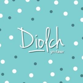 Pecyn Diolch / Thank You Pack (Busnesau - plîs ffoniwch i archebu / Businesses - please phone to order)