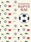 Nai - Pel-droed / Nephew - Football