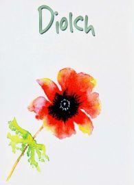 Diolch - Pabi Coch / Thank You - Red Poppy